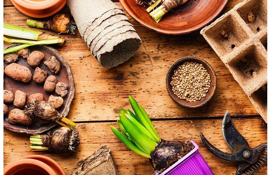 ¿Que es la Astenia Primaveral?